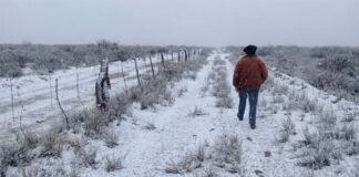 Foto:Una nevada en La Pampa, en agosto de 2019.